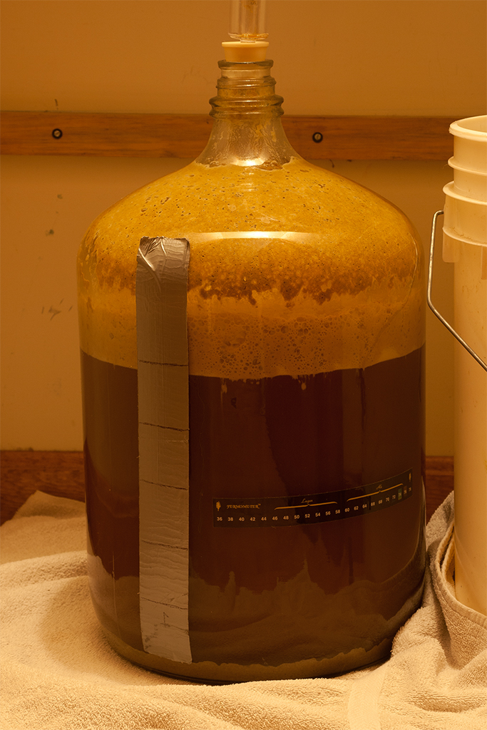 Very happy yeast a few days later